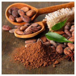 cacao puro polvo